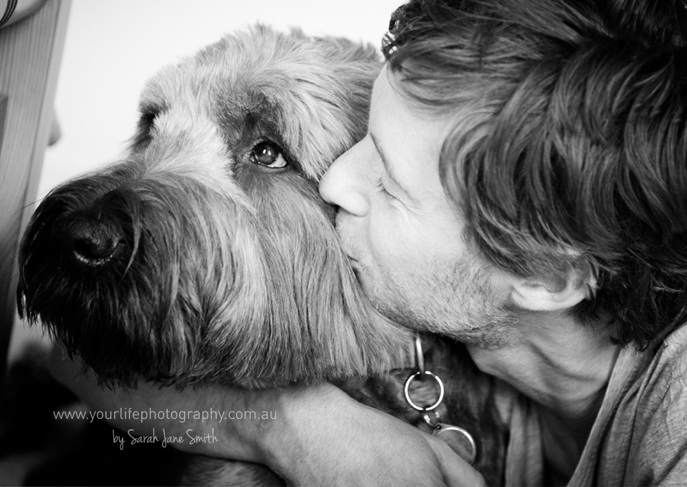 Briard Sunshine Coast Pet Photographer